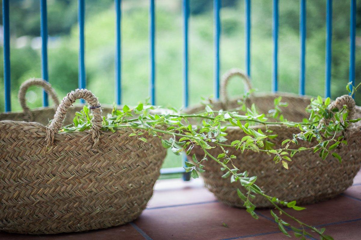 Detalle rústico de plantas naturales en el balcón de la Posada
