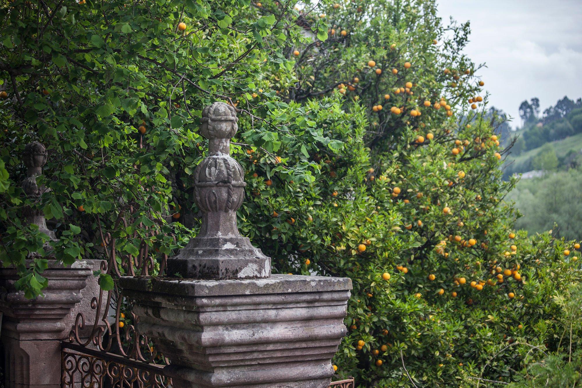 Jardines con encanto llenos de limoneros y frutales