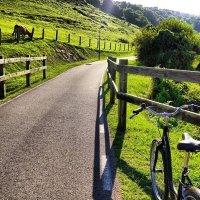Servicio de alquiler de bicicletas para excursione