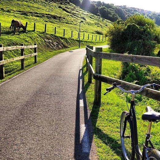 Servicio de alquiler de bicicletas para excursiones a la playa o montaña